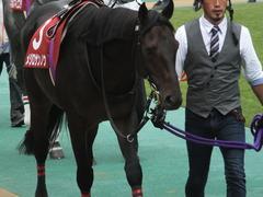 20141012 東京8R 東京HJ メジロサンノウ 04