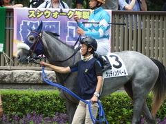 20180609 東京6R 3歳牝馬未勝利 ウェディングベール 13