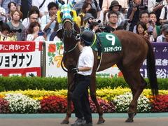 20160612 東京11R エプソムC(G3) アルマディヴァン 04
