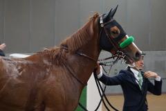 20200215 東京11R クイーンC(G3) 3歳牝馬OP ホウオウピースフル 24