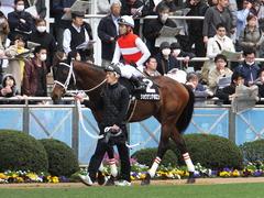 20150321 中山10R 韓国馬事会杯 ショウナンアポロン  11