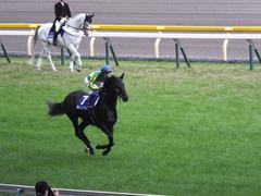 20141102 東京11R 天皇賞(秋) サトノノブレス 08
