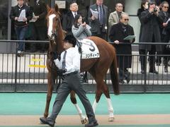 20150222 東京5R 3歳メイクデビュー シンディーア 01