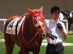 20160618 阪神8R 3歳上牝馬500万下 レーヌドブリエ 07