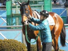 20150125 中山5R 3歳未勝利 トーセンカナロア 11