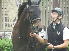 20190608 東京6R 3歳牝馬未勝利 ホウオウヒミコ 13