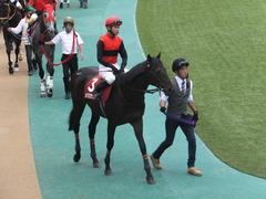 20141012 東京8R 東京HJ メジロサンノ10