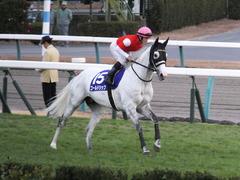 20151227 中山10R 有馬記念(G1) ゴールドシップ 17