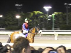 20150624 大井11R 帝王賞(G1) ユーロビート 06