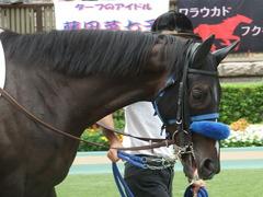 20180617 東京8R (500) ミッキーバード 08