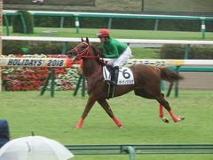 20180929 中山5R 2歳牝馬メイクデビュー オトナノジジョウ 23