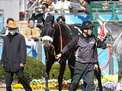 20140405 中山9R 山吹賞 ショウナンラグーン 12