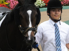 20160605 東京4R 3歳未勝利 ツボミ 08