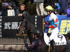 20170218 東京2R 3歳メイクデビュー タネノオー 13