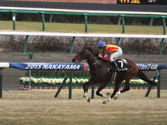 20150125 中山10R 若潮賞 モーリス 15