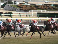 20150125 中山11R AJCC(G2) ゴールドシップ 10