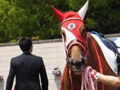 20150425 京都4R 3歳未勝利 レーヌドブリエ 12