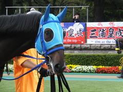 20151017 東京4R 2歳メイクデビュー モーゼス 06