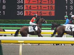 20170625 東京1R 3歳牝馬未勝利 プンメリン 26