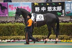 20200216 東京6R 3歳1勝クラス コウソクスピード 09