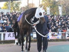 20161229 大井10R 東京大賞典(G1) サンドプラチナ 06