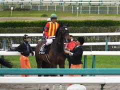 20140419 中山12R ゴールウェイ 10