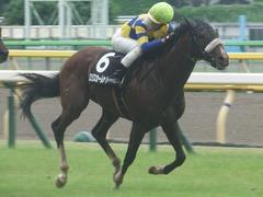20190622 東京10R 八ヶ岳特別(2勝) ロジスカーレット 19