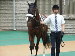 20180616 東京6R 3歳未勝利 ロジスカーレット 05