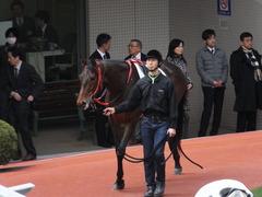 20170311 阪神3R 3歳メイクデビュー フェアチャイルド 09