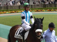 20160423 東京5R 3歳未勝利 アークアーセナル 16