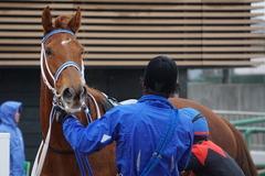 20200118 中山9R 菜の花賞 3歳牝馬1勝クラス シホノレジーナ 23
