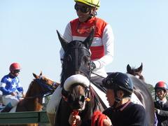 20131221 中山競馬場 ショウナンラグーン 15