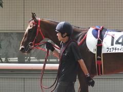 20170910 阪神3R 3歳未勝利 フェアチャイルド 05