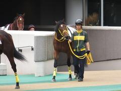 20141102 東京4R ノーブルクリスタル 02