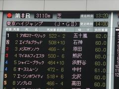 20141012 東京8R 東京HJ メジロサンノウ 01