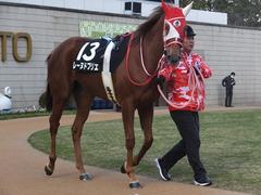 20170114 京都10R 北大路特別 4歳上牝馬1000万下 レーヌドブリエ 04