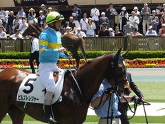 20170506 東京5R 3歳牝馬500万下 ビルズトレジャー 15