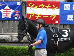 20170625 東京11R パラダイスS 3歳上(OP) ショウナンアチーヴ 05