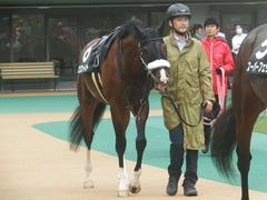 20190622 東京10R 八ヶ岳特別(2勝) ロジスカーレット 16
