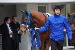 20200118 中山9R 菜の花賞 3歳牝馬1勝クラス シホノレジーナ 03