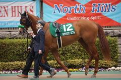 20200215 東京11R クイーンC(G3) 3歳牝馬OP ホウオウピースフル 03