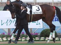 20171216 中山2R 2歳牝馬未勝利 ルフィーナ 03