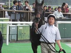 20161023 東京9R くるみ賞 2歳500万下 コウソクストレート 27