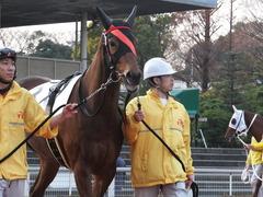 20151224 大井2R 2歳新馬 マルカンヒラリー 06