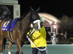 20141127 大井11R 勝島王冠(S3) ユーロビート 03