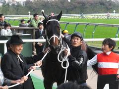 20151031 東京10R 赤富士S ショウナンアポロン 22