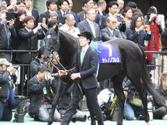 20161030 東京11R 天皇賞・秋(G1) サトノノブレス 03