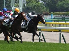 20160514 東京5R 3歳牝馬未勝利 ツボミ 20