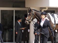 20160227 中山5R 3歳メイクデビュー ツボミ 02
