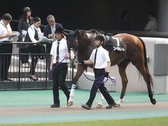 20140525 東京12R 丹沢S ユーロビート 02